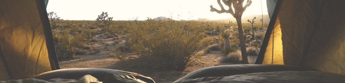 inside of the Front Runner roof top tent overlooking a beautiful desert in the morning light at dawn